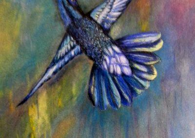 Bird 3 C
