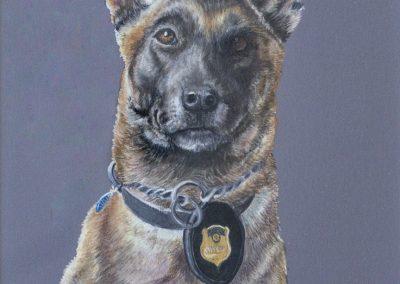 K9 Officer Karen Brydon