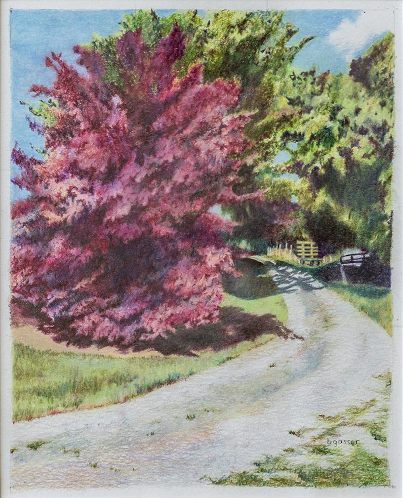 Gravel Road on Martha's Farm Barb Gasser